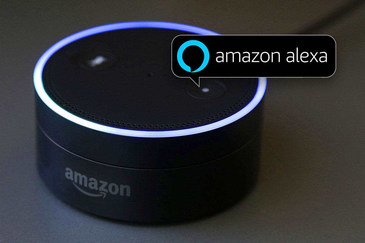 Software Developers Harnessing the Power of Amazon's Alexa